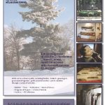 Membership service brochure (interior), Morrison County Historical Society, designed by Mary Warner, 2014.