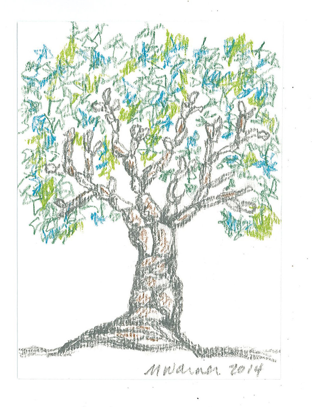Tree, in colored pencil, by Mary Warner.