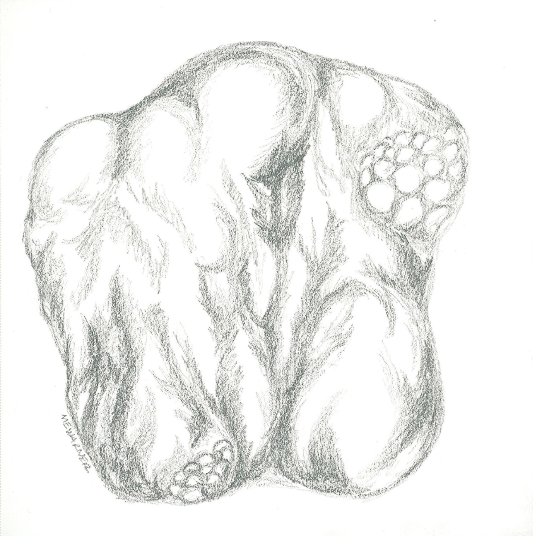 Imaginary rock, pencil, Mary Warner, 2014.