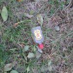 Discarded liquor bottle, 2018.